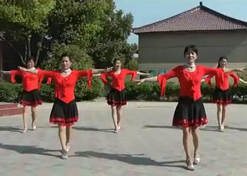 墨兰广场舞